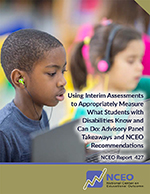 Using Interim Assessments to Appropriately Measure What Students with Disabilities Know and Can Do: Advisory Panel Takeaways and NCEO Recommendations (NCEO Report #427)